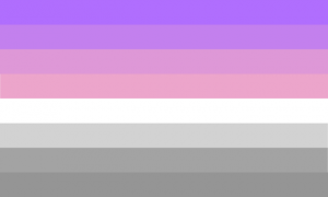 Nomasexual flag